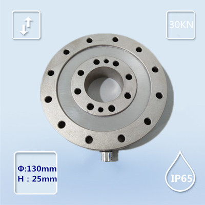R256-博兰森-轮辐称重传感器